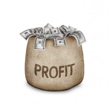 Why Online Business Opportunities from Home Are Profitable